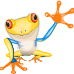 Froggy va chez le comptable optimiser son marketing web 1